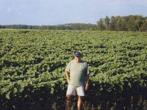 2006 - Harvest Soybeans | Roed Seed Sales